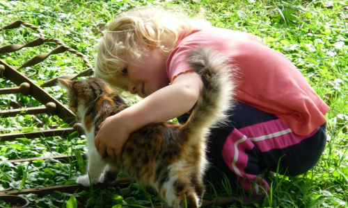 Five full-proof Methods on How to Raise a Compassionate Child